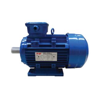 Jual-Elektro-Elektrik-Dinamo-Motor-Electro-Motor-NLG-MS-Series-1480-RPM-(3-Phase)